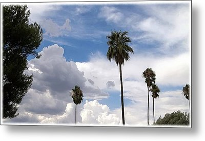 Palms And Clouds Metal Print by Glenn McCarthy Art and Photography