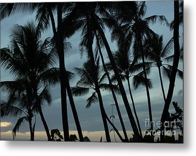 Palms At Dusk Metal Print by Suzanne Luft