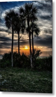 Palms At Sunet Metal Print by Michael White