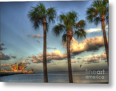 Palms At The Pier Metal Print by Timothy Lowry