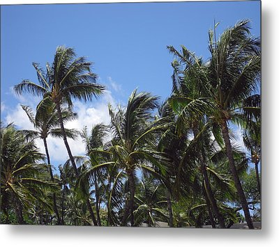 Palms In The Wind Metal Print