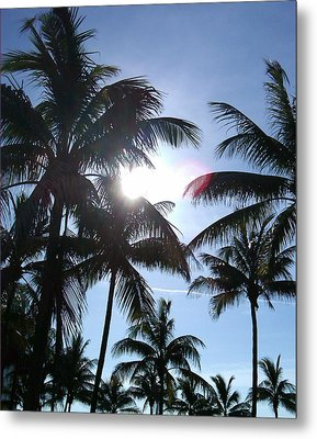 Metal Print featuring the photograph Palms by J Anthony