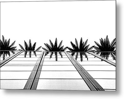 Palms Metal Print by Tammy Espino
