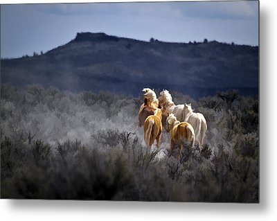 Palomino Buttes Band D1482 Metal Print by Wes and Dotty Weber