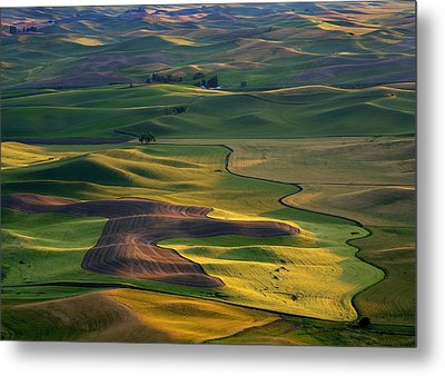 Palouse Shadows Metal Print by Mike  Dawson