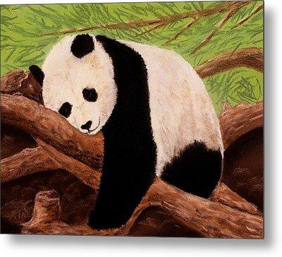 Panda Metal Print by Anastasiya Malakhova