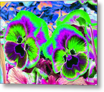 Pansy Power 60 Metal Print by Pamela Critchlow