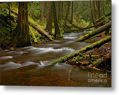 Metal Print featuring the photograph Panther Creek Landscape by Nick  Boren