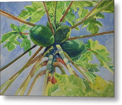 Papaya Metal Print