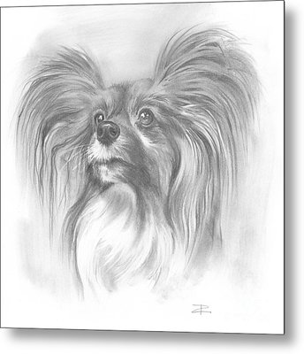 Metal Print featuring the drawing Papillon by Paul Davenport