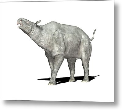 Paraceratherium Prehistoric Mammal Metal Print by Friedrich Saurer