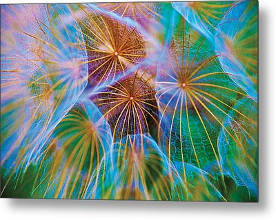 Parachute Time Metal Print