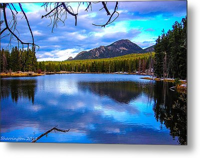 Metal Print featuring the photograph Paradise 2 by Shannon Harrington