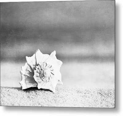 Paradise Metal Print by Carolyn Cochrane