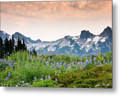 Metal Print featuring the photograph Paradise Meadows And The Tatoosh Range by Jeff Goulden