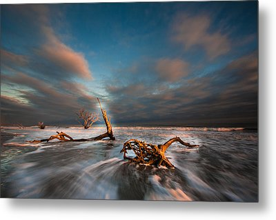 Metal Print featuring the photograph Paradise  by RC Pics