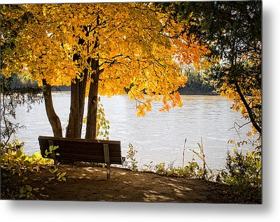 Paradise Metal Print by Wayne Meyer