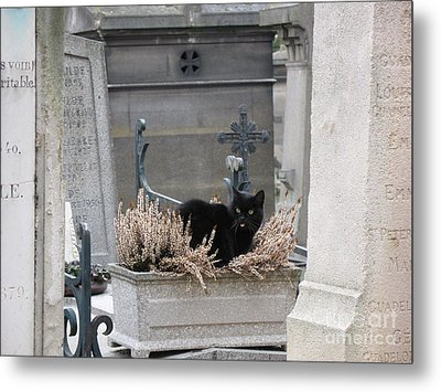 Paris Cemetery Cat - Le Chats Noir - Pere Lachaise - Black Cat On Grave Cemetery Art Metal Print by Kathy Fornal