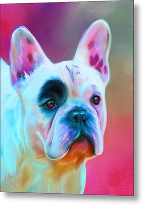 Vibrant French Bull Dog Portrait Metal Print by Michelle Wrighton