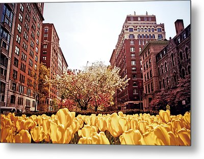 Park Avenue In The Spring  Metal Print by Vivienne Gucwa