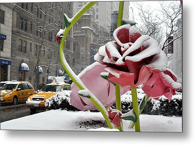 Park Avenue Rose In The Snow Metal Print by Diane Lent