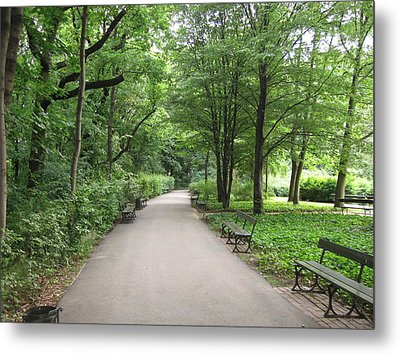 Park Bench Poland Metal Print by Nora Boghossian