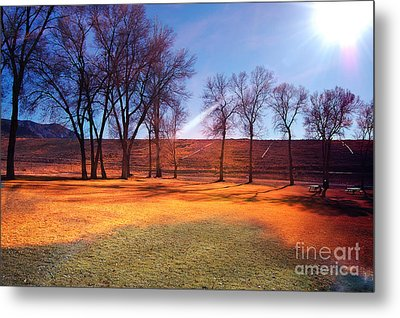 Park In Mcgill Near Ely Nv In The Evening Hours Metal Print
