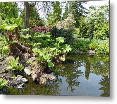 Metal Print featuring the photograph Park Pond by Laurie Tsemak