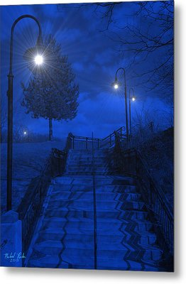 Park Stairs Metal Print by Michael Rucker