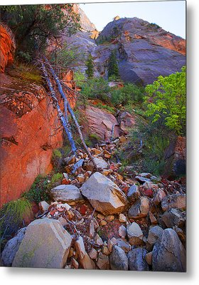 Zion National Park Utah Usa Metal Print