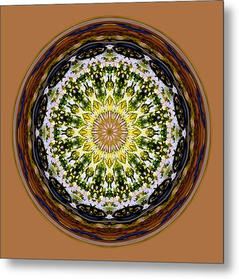 Parkside Mandala Metal Print by Bill Barber