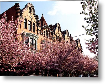 Metal Print featuring the photograph Philadelphia Parkside  by Christopher Woods
