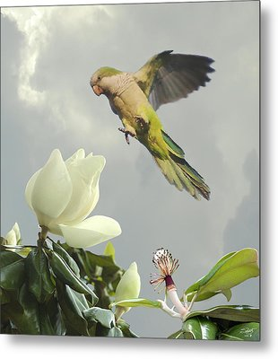 Parrot And Magnolia Tree Metal Print by IM Spadecaller