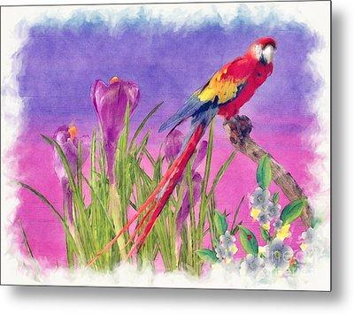 Parrot Metal Print by Liane Wright