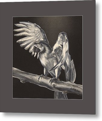 Parrot On Branch Metal Print