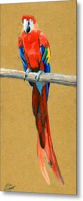 Parrot Perch Metal Print by Alice Leggett