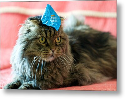 Party Cat Metal Print