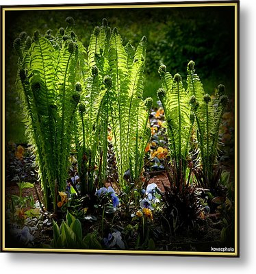Party Ferns Metal Print