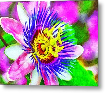Passiflora Edulis Otherwise Known As Passion Flower Metal Print by Digital Photographic Arts