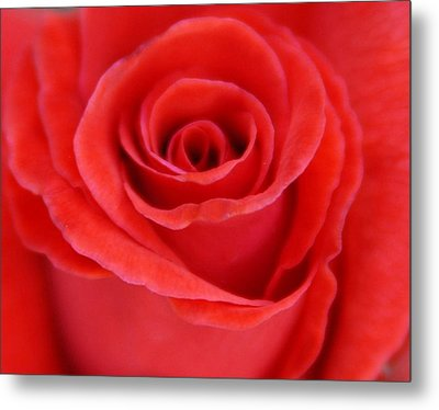 Passion Metal Print by