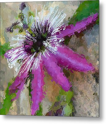 Passion Flower Metal Print by Amanda Lakey