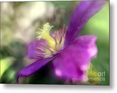 Passionate About You Metal Print by Mary Lou Chmura