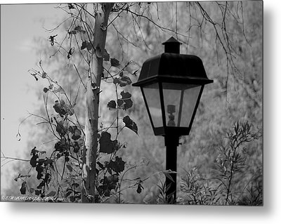 Metal Print featuring the photograph Past N Present by Elaine Malott