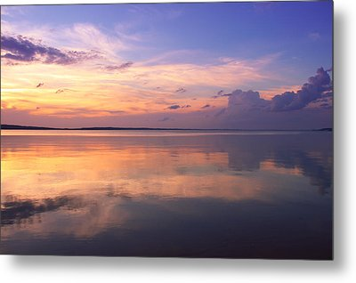 Pastel Majesty Metal Print by Rachel Cohen