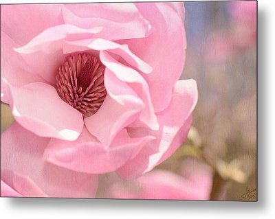 Pastel Pink Petals And Paint Metal Print by Lisa Knechtel