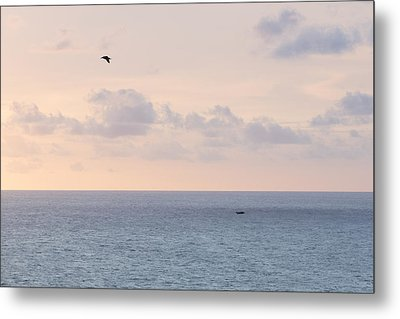 Pastel Sunset Sky At The Ocean Seascape With Flying Birds Photo Art Print Metal Print by Ocean Photos