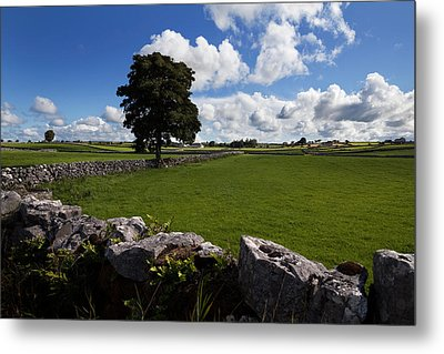Pastoral Farmland Between Clonbur Metal Print by Panoramic Images