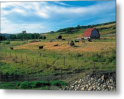 Pasture 2 Metal Print by Terry Reynoldson