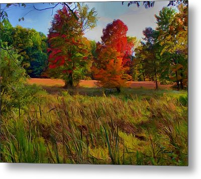 Metal Print featuring the photograph Pasture Gone Fallow by Dennis Lundell