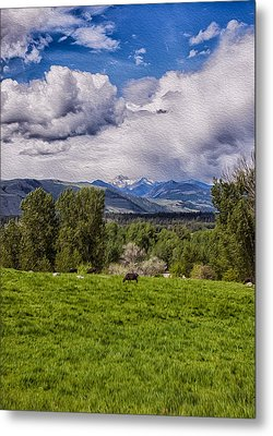 Pastures And Clouds  Metal Print by Omaste Witkowski